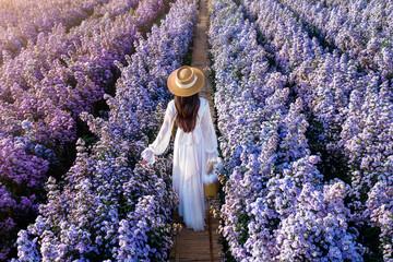 Wall Mural - Beautiful girl in white dress walking in Margaret flowers fields.