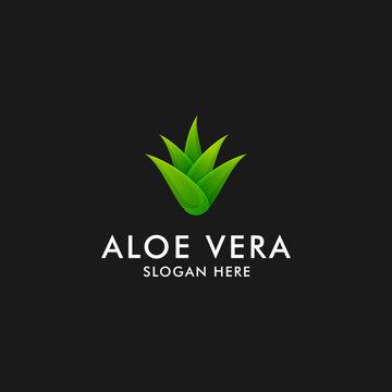Aloe vera logo design. herbal plant icon symbol vector