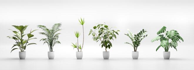 Fototapeta Set of tropical green plants in pots. Home decoration assets obraz