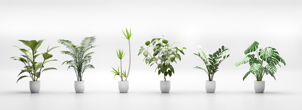 Set of tropical green plants in pots. Home decoration assets