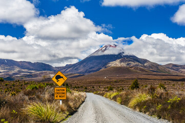 Kiwi sign and mount Ngauruhoe in New Zealand