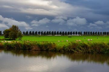 Typical Dutch landscape in autumn