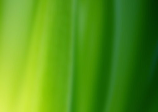 Abstract background image using green gradient