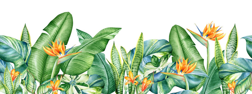 Seamless pattern with watercolor tropical plants and orange flowers