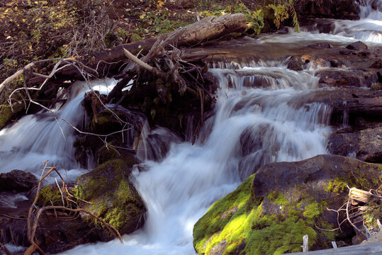 Lower cascade of Lost Creek Falls in a western Montana state park.