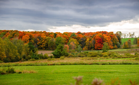 Wisconsin farmland and colorful forrest in October