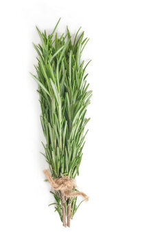 bunch of rosemary tied with scourge isolated on white background