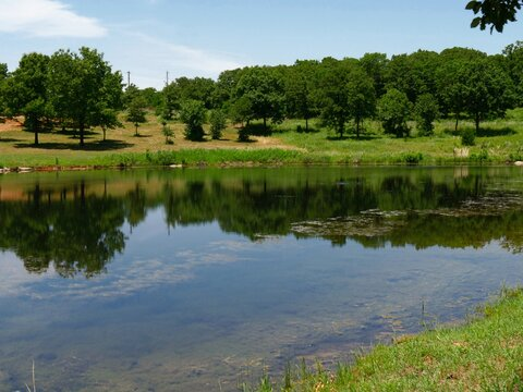 Reflections at a lake by the roadside at Chickasaw National Recreation Area in Davis, Oklahoma