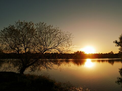 Breathtaking sunset reflected in the waters of a lake, with the silhouette of trees