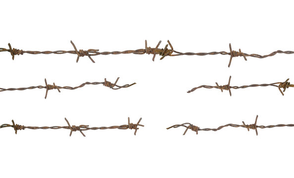 The torn barbed wire represents freedom.