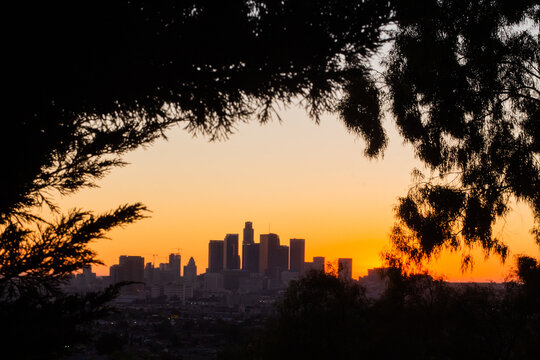 Los Angeles Skyline Sunset Double Exposure