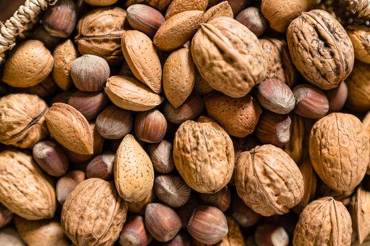 Raw walnuts put together with hazelnuts and Brazilian nuts