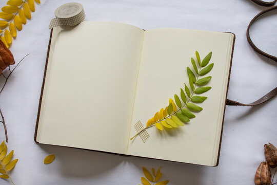 Open notepad with left page blank (space for text). On the right side a green and yellow leaf from a staghorn sumac tree is attached by pretty masking tape, to be pressed & dried.