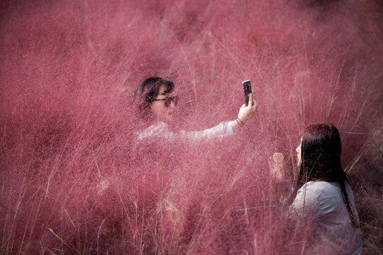 A woman takes a selfie as her friend adjusts her makeup in a pink muhly grass field in Hanam