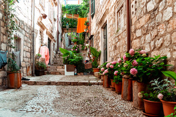 Small alleys full of flowers in Dubrovnik, Croatia
