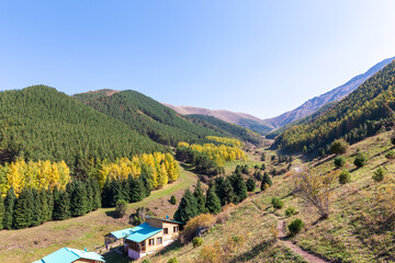 Autumn mountain landscape. House in the mountains. green and yellow trees on the hillside. Forest in the mountains. Kyrgyzstan.