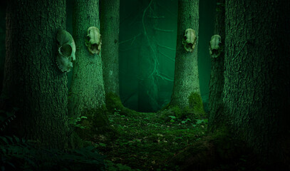 Skulls hanging on the trees in dark enchanted forest. Shamanic pagan witch ritual
