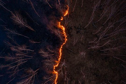 Fire spreading across dark forest