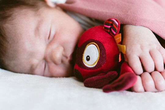 Close-up of newborn baby girl holding toy while sleeping on bed in hospital