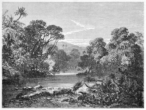 calm water of Kakriman river, Guinea, surrounded by lush jungle vegetation in western Africa. Ancient grey tone etching style art by Sabatier after Lambert, Le Tour du Monde, Paris, 1861