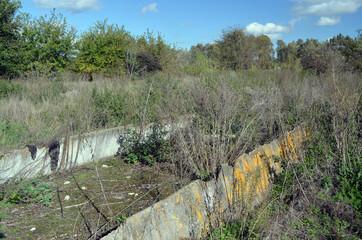 Fototapeta Broken concrete.Abandoned huge Soviet milk farm remains. Kiev Region