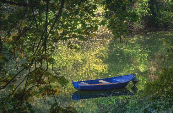 Boot auf dem Altrhein im Wald