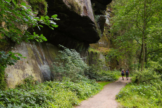 Hiker on the Hiking trail Polenz Valley (Polenztal) in Saxon Switzerland, Germany