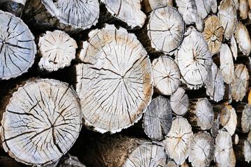 old firewood texture