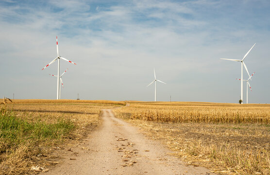 Wind turbines in the fields, renewable energy concept