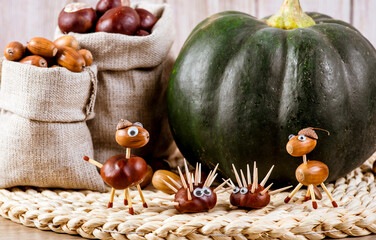 Fun autumn crafts concept. Using autumn fruits horse chestnuts and oak acorns to make fun animals,...