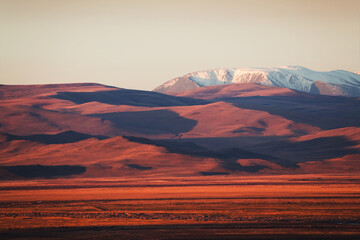 Snow-covered mountain peaks and yellow hills at sunrise. Autumn landscape of Kurai steppe in Altai, Siberia, Russia.