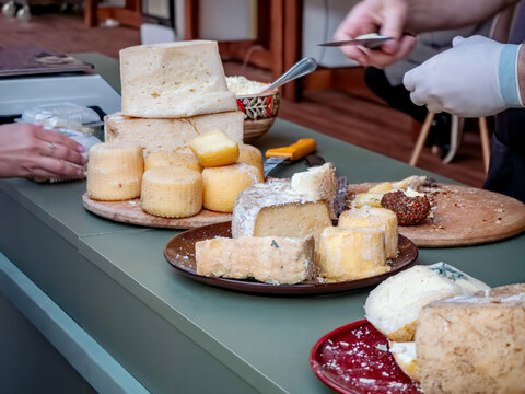 Various types of cheese at the street food festival