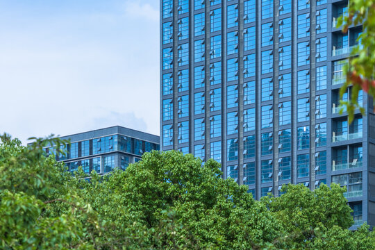 modern office building with green trees.