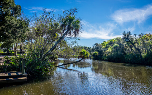 St Lucie River 2