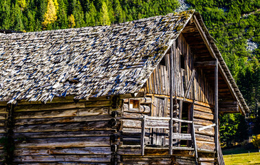 Wall Mural - old wooden hut