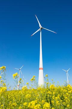 Windkraftanlage vor einem Rapsfeld