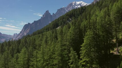 Wall Mural - Snowy Mont Blanc Massif and Summer Forestry Landscape Aerial Footage