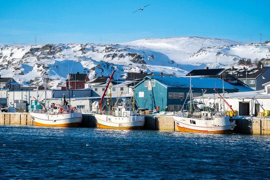 Fishing boats in the port, Berlevag, Varanger peninsula, Finnmark, Norway