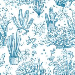 Wall Mural - Seaweed seamless pattern. Reef aquatic plants and corals, underwater sea and aquarium life nautical japanese, chinese sketch vector texture. Illustration laminaria botanical seamless nautical pattern