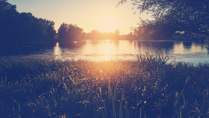 Beautiful summer autumn landscape, the sun sets in the forest, a view of the trees and grass pond, reflected in the water. Stunning bright sunset