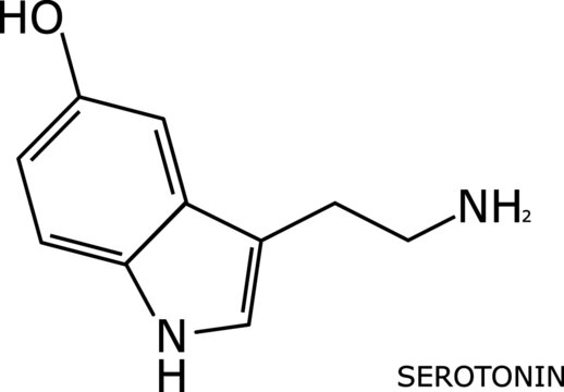 serotonin molecular structure on black, over a white background and with its name labeled