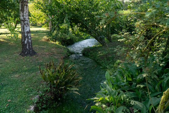 Small artificial stream in the Ninfa Garden in Italy