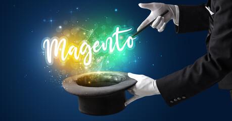 Magento 2 Development company