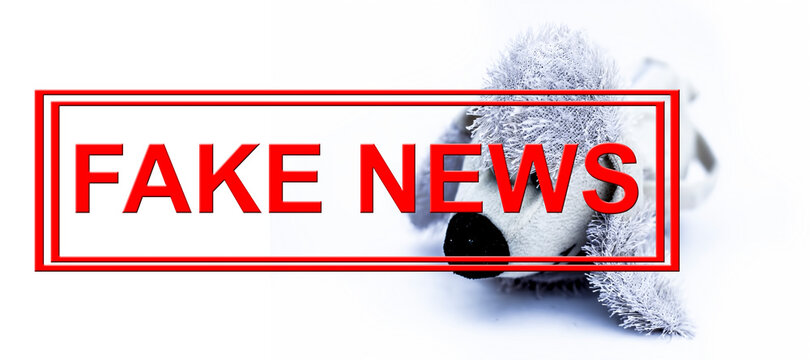 Shot of an adorable white a stuffed dog with written fake news isolated on white background.