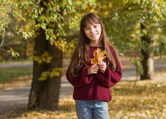 Adorable girl in smiles. The child holds  leaves at the autumn park.