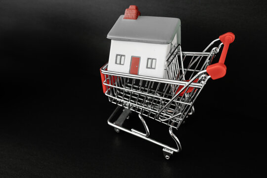House hunting real estate concept. Small home in shopping cart for buying new property, homeownership.