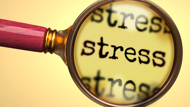 Examine and study stress, showed as a magnify glass and word stress to symbolize process of analyzing, exploring, learning and taking a closer look at stress, 3d illustration