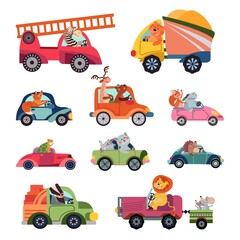 Animal car drivers. Cartoon kids vehicle, funny animals transportation group. Cute racers, isolated reptiles lion driving vector characters. Illustration cartoon car driver, driving machine lorry