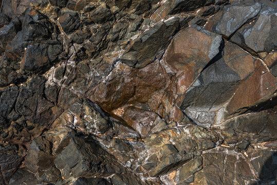 Closeup of wet rock surface near the Indian ocean