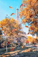 Fototapete - Eiffel tower in Paris in autumn